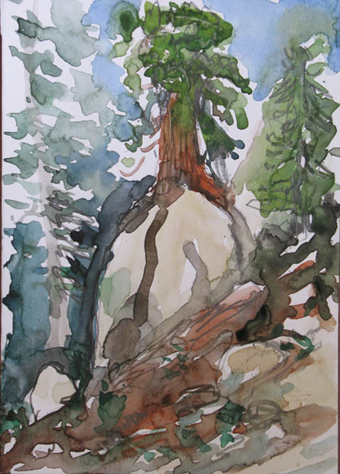 High Sierra Watercolor Art, Carson Iceberg Wilderness 1, David Maxim