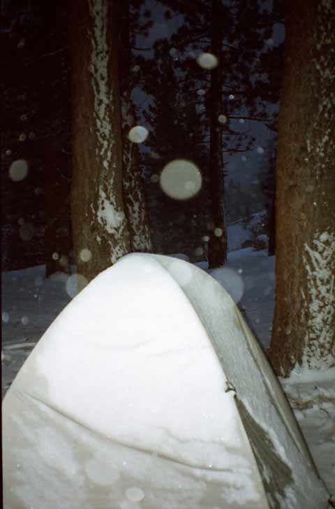 Dampened quiet settles with snow and darkness, Carson Falls, April 2000.