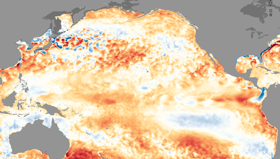 NOAA Sea Surface Temperature anomalies of Feb 2019, compared to '85 to 2012.