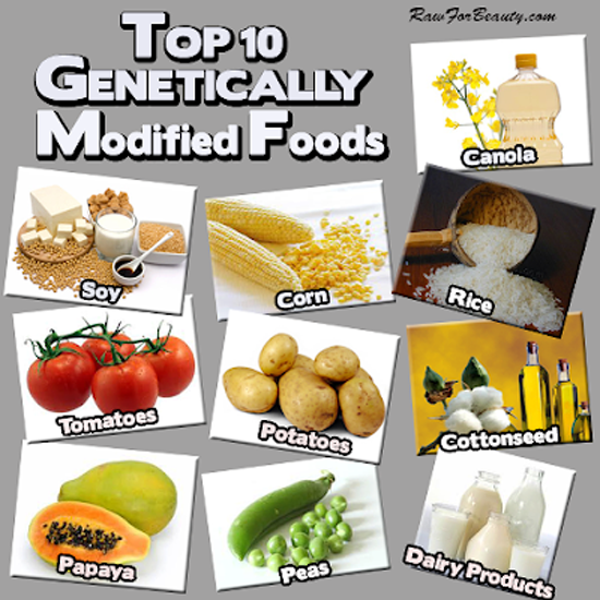 Top ten Genetically Modified Foods, by Raw for Beauty.