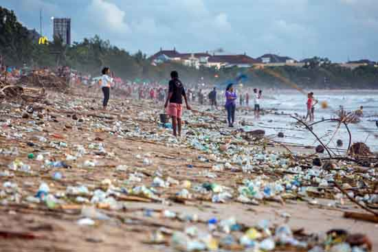 The High Tide of Human Crap. UN IPBES Report, Maxim Blinkov/Shutterstock.