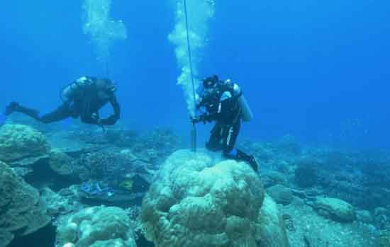 Researchers dive down to corals to extract coral cores that will give us information about Earth's past climate, copyright Jason Turl.