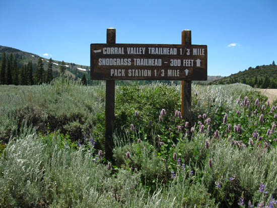 Corral Valley Trailhead at Rodriquez Flat.