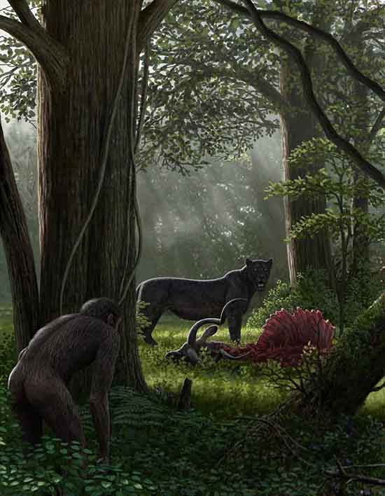 Dinofelis, painting by Mauricio Antón, widespread in Europe, Asia, Africa and North America at least 5 million to about 1.2 million years ago.