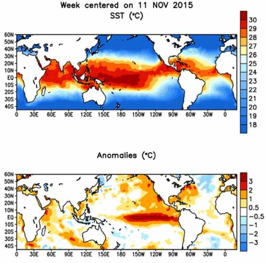 Global sea surface temperatures and anomalies animation.