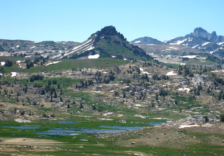 Emigrant Meadow, Grizzly Peak, Grizzly Meadow, Tower Peak, and Yosemite across Emigrant Wilderness from Brown Bear Pass on a crisp, clear Spring day.
